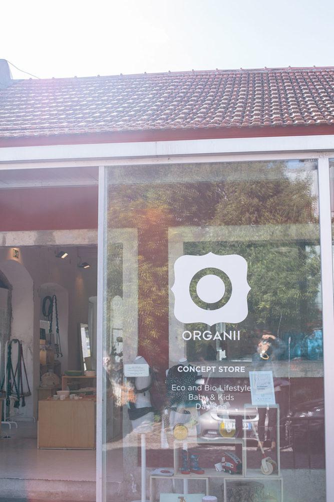 Organii-concept-store-8